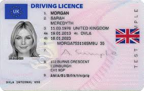 Image result for provisional driving licence sample